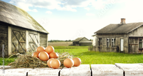 Plakat jaja i gospodarstwo