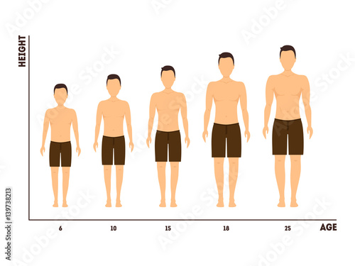 Fotografía  Height and Age Measurement of Growth from Boy to Man. Vector