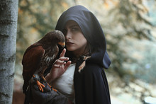 Mysterious Woman With Hawk