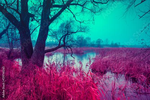 blekitnej-czerwieni-rocznika-jesieni-wiejski-krajobraz-drzewo
