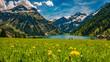 canvas print picture - Vilsalpsee im Frühling mit Blumenwiese und Berge im Hintergrund Tannheimer Tal Österreich