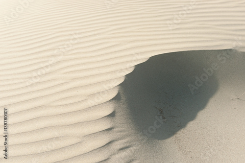 Fotografija  Windswept sand patterns Ninety Mile Beach, Northland NZ