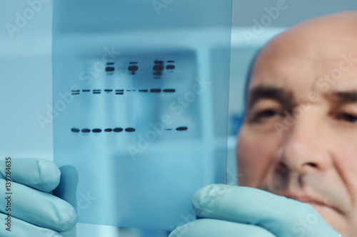 Valokuva Senior scientist checks results of protein experiment