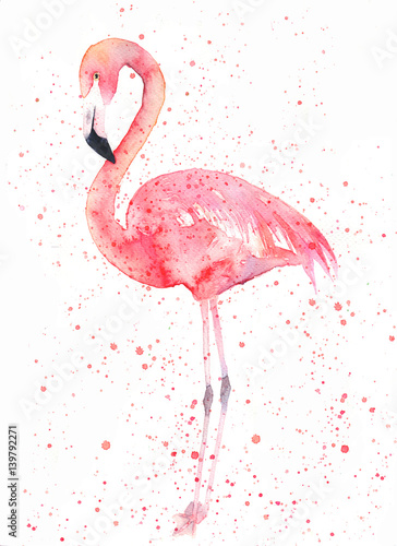 Fotografie, Tablou Watercolor flamingo with splash. Painting image
