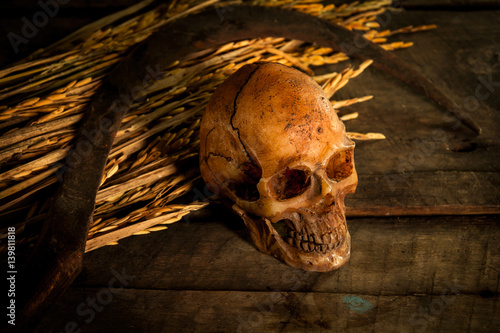 Photo Stands Egypt Still life with skull cap machine weave on straw and sickle,rice kratib