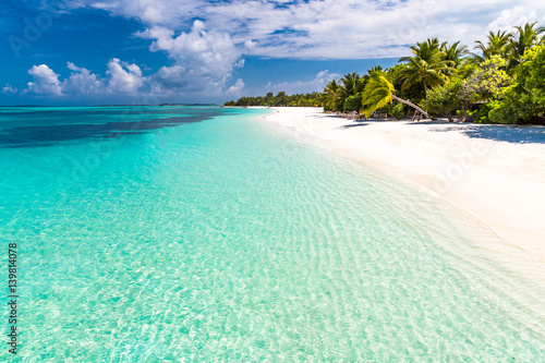 Tropical beach Maldives paradise beach. Perfect tropical island. Beautiful palm trees and tropical beach. Moody blue sky and blue lagoon. Luxury travel summer holiday background concept.
