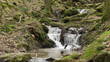a river flow / waterfall in the Margarethenschlucht