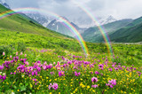 Fototapeta Tęcza - Summer landscape with a rainbow and mountain flowers