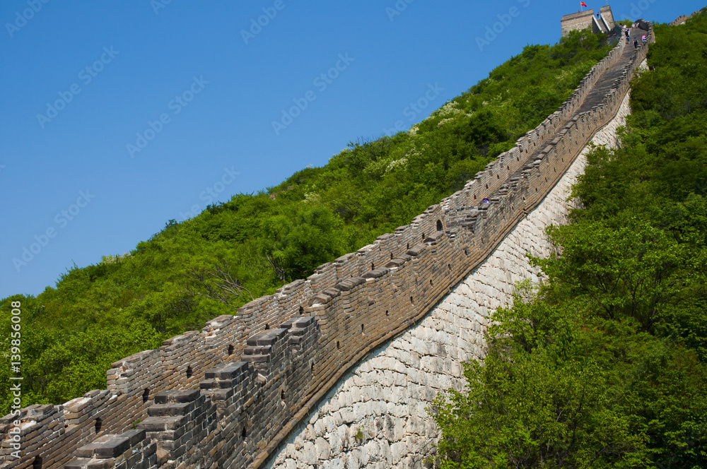 Fotografie, Obraz Mutianyu Section of the Great Wall of China