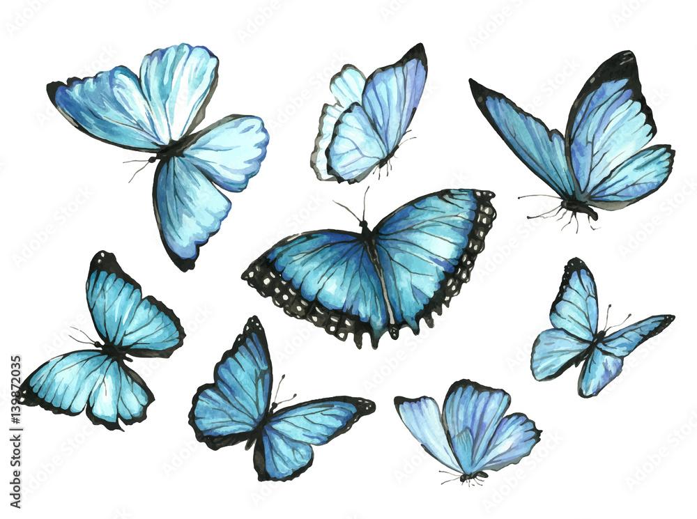Fototapeta Blue Butterflies. Set. Watercolor illustration