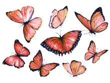 Collection Of Red Butterflies Flying. Watercolor Illustration.