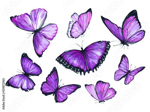 Fotografie, Obraz  Flying purple butterfly. Watercolor illustration