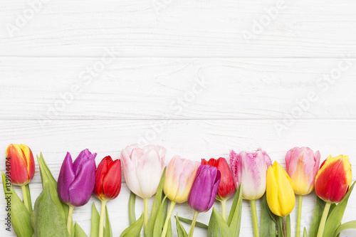 Spoed Foto op Canvas Tulp colorful tulips on white wooden background.