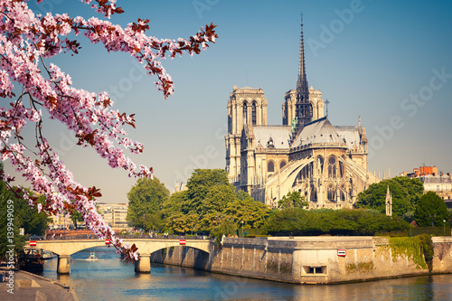 Notre Dame de Paris at spring, France Wallpaper Mural
