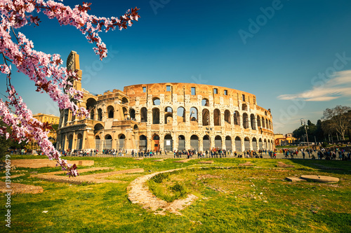 Foto auf Gartenposter Rom Colosseum at spring in Rome, Italy