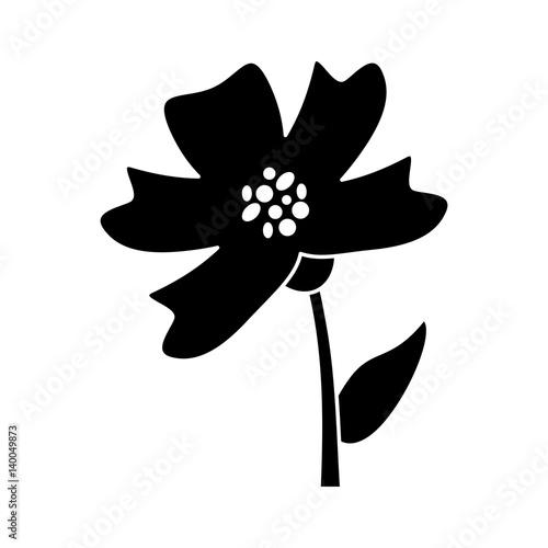 Canvas Print periwinkle flower decoration silhouette vector illustration eps 10