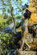 Bronze Statue Fountain Boy With Swan In The Wilanów Park, Warsaw