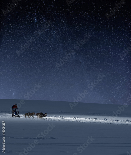 Cadres-photo bureau Arctique Hundeschlitten vor Sternenhimmel