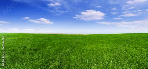 Montage in der Fensternische Gras Sunset under the Inner Mongolia prairie, Chinese scenery