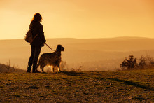 Woman With Her English Setter ...