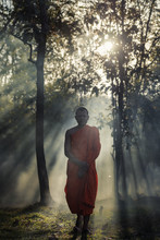 Novice Pilgrimage To The Forest Alone,Novice Monk Went On A Pilgrimage Alone.