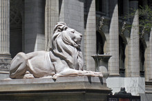 New York Public Library Lion S...