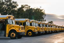 Parked Row Of School Buses