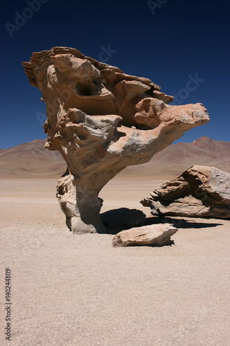 Fotografie, Obraz  Arbol de Piedra (Stone tree) is an isolated rock formation in the Eduardo Avaroa