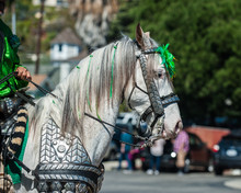 Elegant Costume White Horse He...