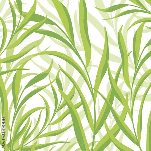 Tapeta ścienna na wymiar Abstrakcyjna ilustracja tła z liści tropikalnych