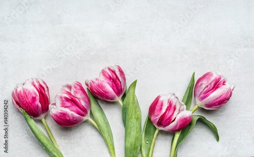 piekne-rozowe-tulipany