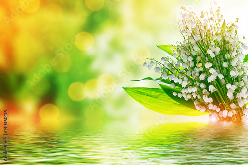 Wall Murals Lily of the valley Spring landscape. flowers lily of the valley