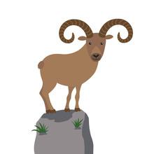 Mountain Goat Vector Illustrat...