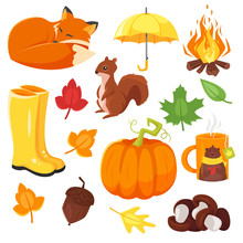 Vector Cartoon Style Set Of Autumn Symbols: Fox, Pumpkin, Yellow Boots