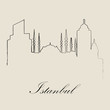 Calligraphic Skyline of Istanbul - Vector Illustration