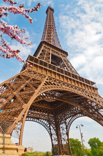 Eiffel Tower in Paris at spring, France Wall mural