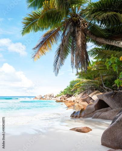 Foto auf Gartenposter Strand Beautiful tropical sand beach with granite rocks and coconut palm trees. Beach Anse Cocos, La Digue, Seychelles.