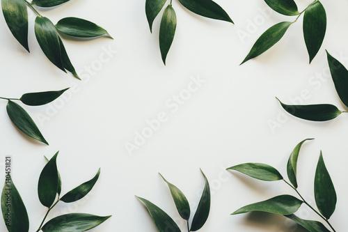 Obraz Frame With Green Leaves - fototapety do salonu