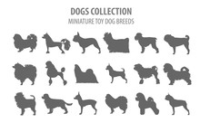Miniature Toy Dog Breeds Collection Isolated On White. Flat Style