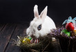 White rabbit with easter eggs