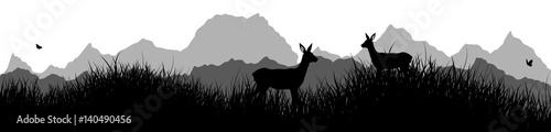 Photographie Panorama | Rehe auf der Wiese