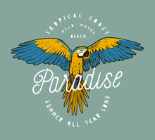 Colorful Paradise Parrot Grunge Label Print