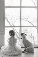 Little Girl With Dog Looking O...