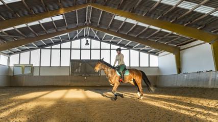 Junge Reiterin trabt mit Hannoveraner Pferd in der Reithalle