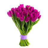 Fototapeta Tulipany - violet tulips isolated on white