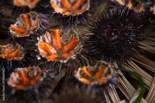 Poster Coquillage Fresh sea urchins