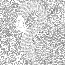 Fantastical Bird Coloring Book. Amazing Flamingo With Feathers And Patterns And Plumage. Black And White. Beautiful And Fun Image To Color In. Indian, Tribal, Zentangle Patterns