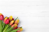 Fototapeta Tulips - Tulpen auf weißem Holz