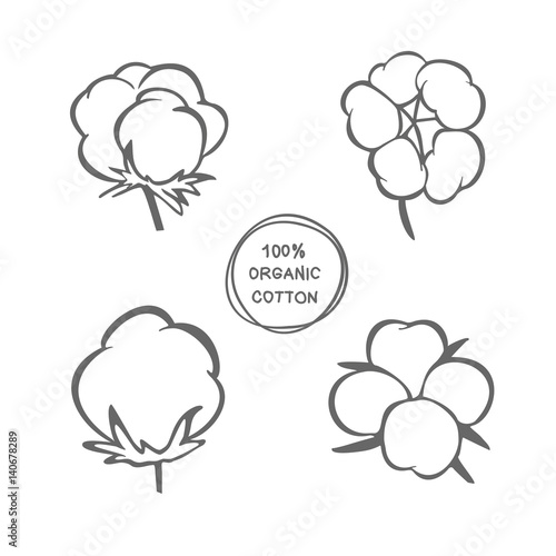 Vector Set Of Hand Draw Ink Cotton Plant Cotton Icons