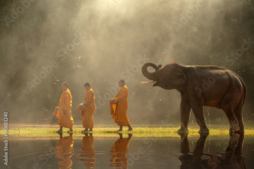 фотография  Thailand Buddhist monks walk collecting alms with elephant is traditional of religion buddhism on faith thai people